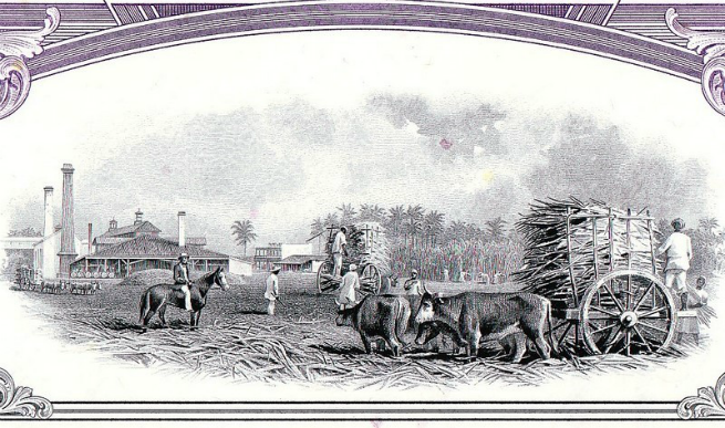 Illustrated scene from the sugar cane harvest, c/o colonialthreehalfpence.net